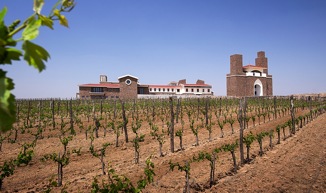 Shandong is one of China's wine regions