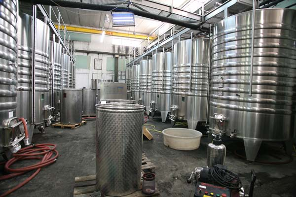 Tank room in Hevron Heights (photo courtesy of Wine Terroirs)